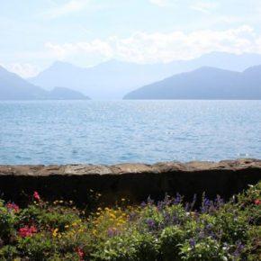 Boat trips on Lake Lucerne (EN)