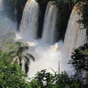 Iguazu Falls trip (EN)