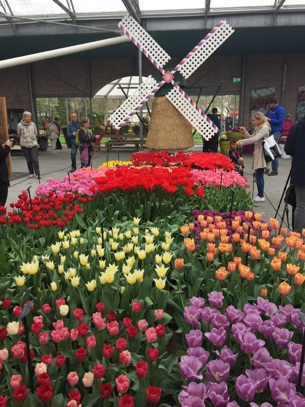spring-trip-to-amsterdan-keukenhof