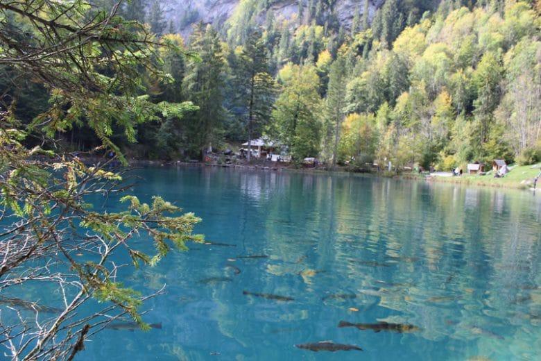 blausee-lake-day-trip.04.jpg