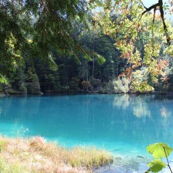 Blausee Lake Day Trip (EN)