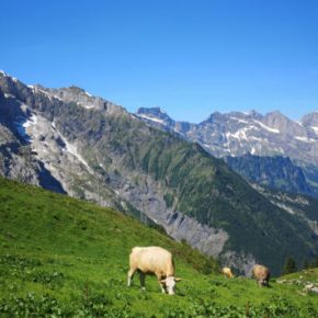 3 Top attractions in Engelberg (En)