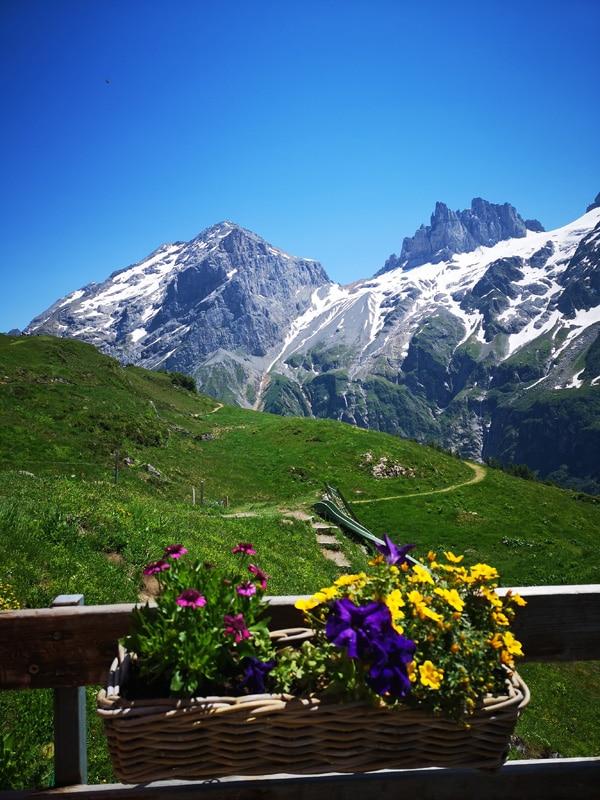 Sommer in der Schweiz